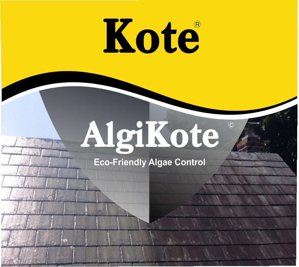 Algae Control Eco Friendly